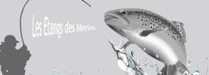 ETANGS DES MERLES