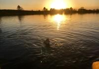 Fin de journée pêche labouheyre